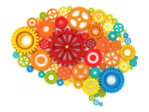 site maintenance-brain gears image